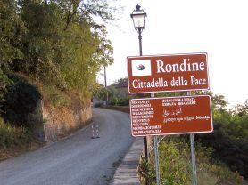 RONDINE_2